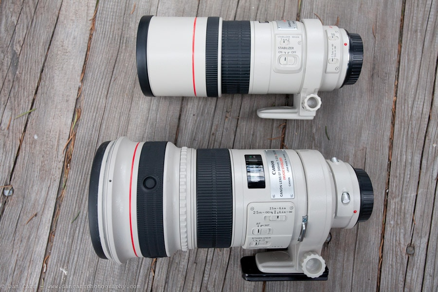 Battle of the 300s.  300mm F4 IS Vs. 300mm F2.8 IS