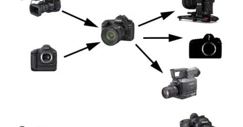 Will Stills and Video Cameras Converge ? Maybe Not.....