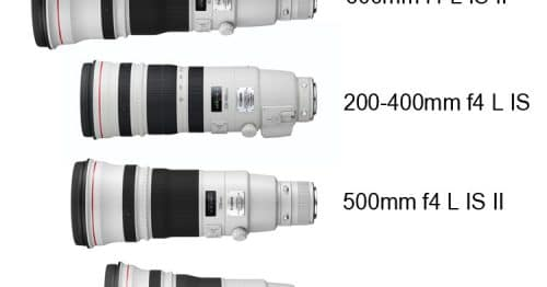 Canon 500mm MKII and 600mm MKII Availability.