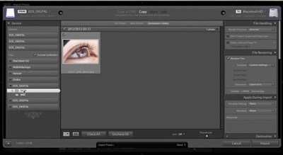 Ingesting Multiple Memory Cards Into Adobe Lightroom
