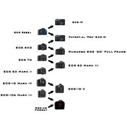 Canon_roadmap_small