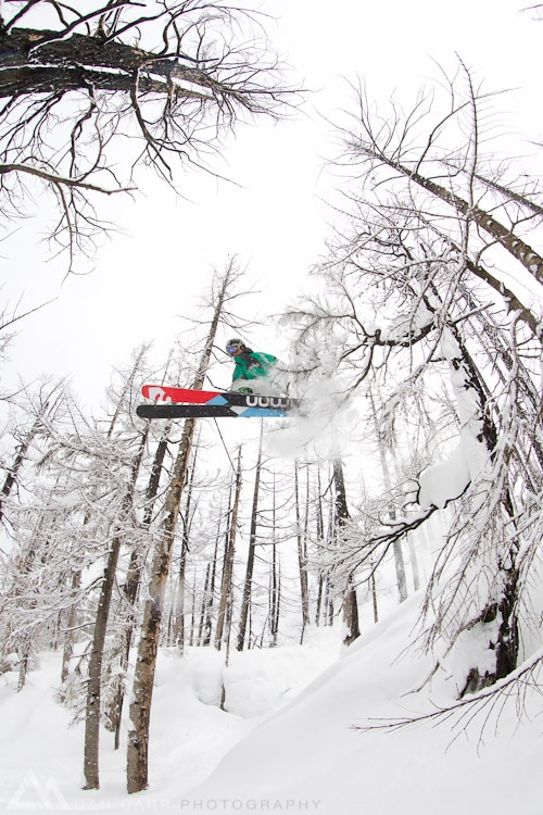 skis powder through the burn zone trees