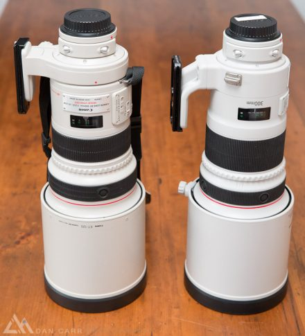 Comparing Canon's 300mm f2.8 Ls  – MKI Vs MKII