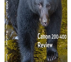 New Free eBook Available - Canon 200-400 Extended Review