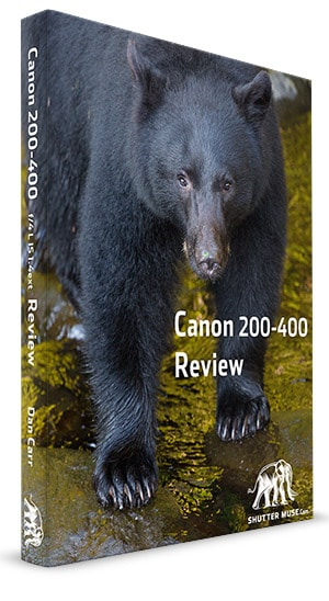 200-400review_cover copy small