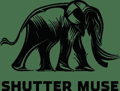 ShutterMuse_Logo_Full_dan copy