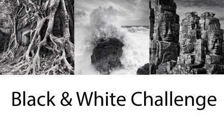 5 Day Black & White Challenge