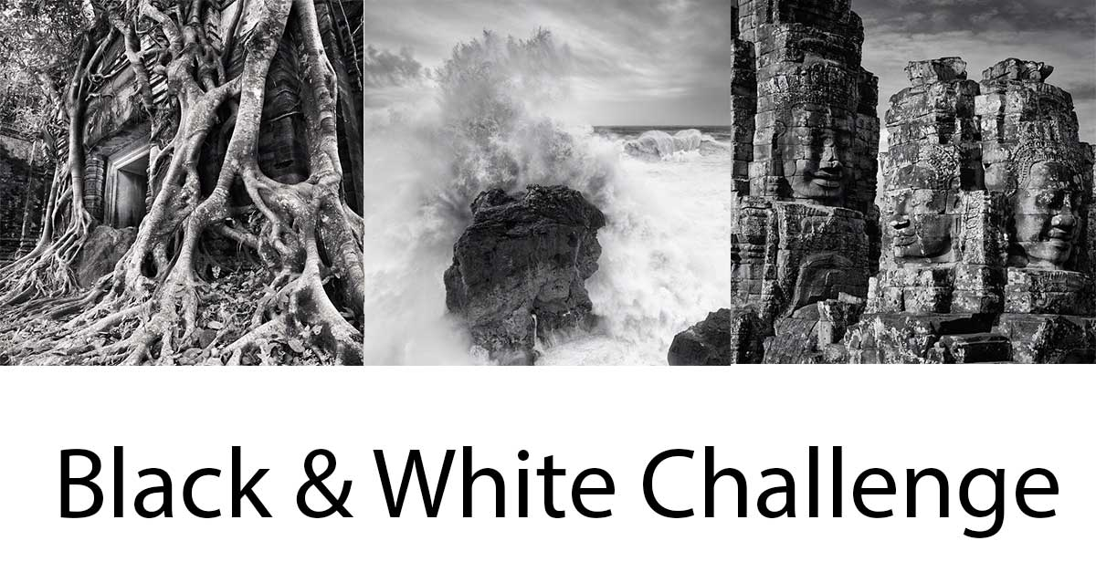 5 day black white challenge