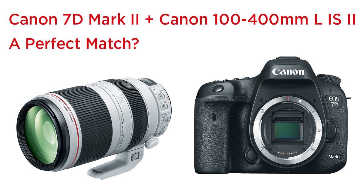 Canon 7D Mark II + Canon 100-400mm L IS II - Perfect Match?