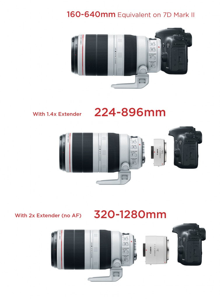 canon-7d-mk2-100-400-extenders