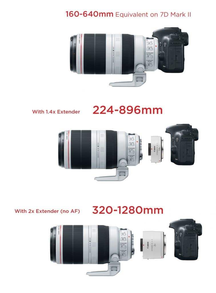 canon-7d-mk2-100-400-extenders