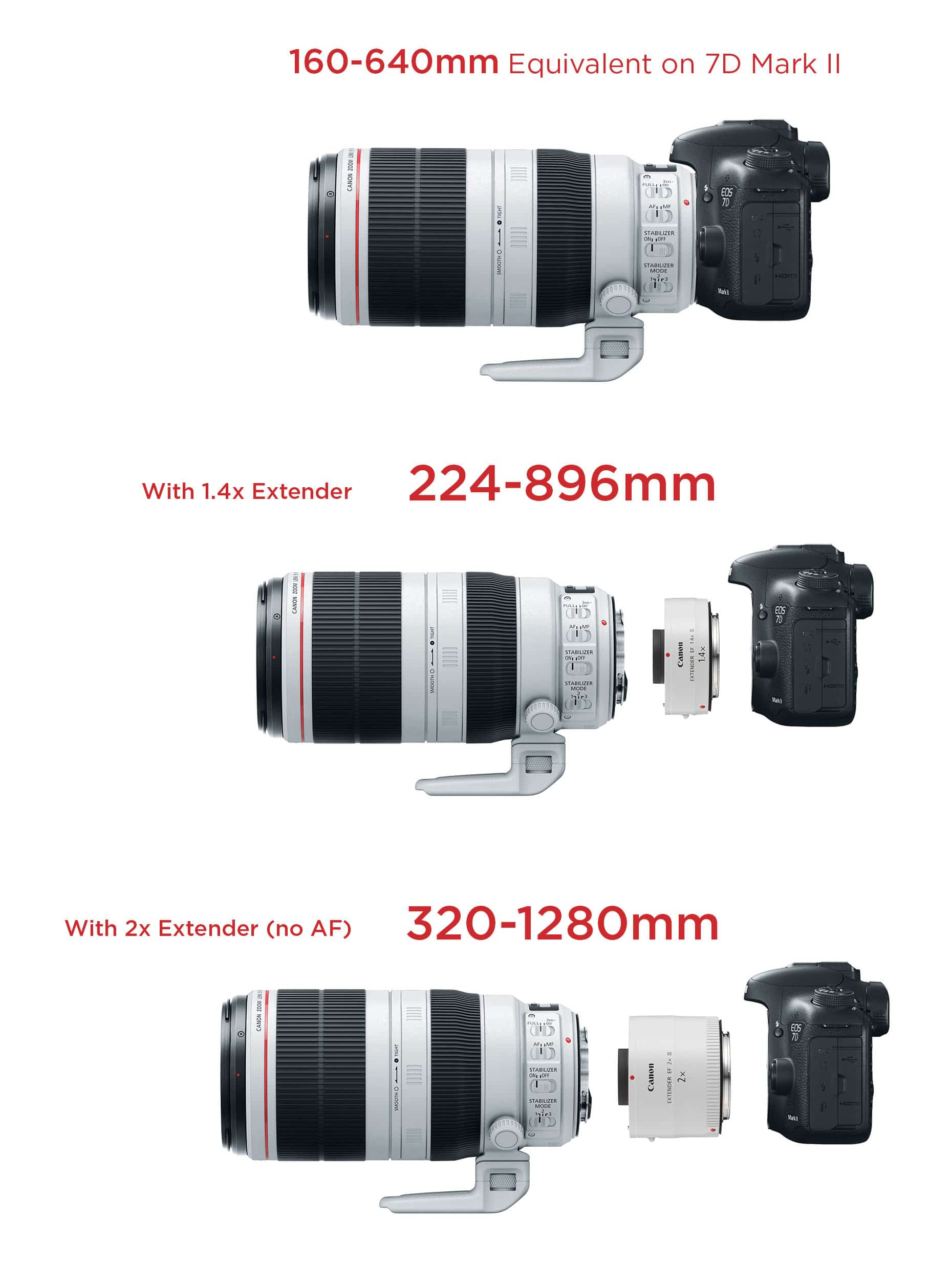 Canon 100-400 II with 1 4x Extender - You won't believe this!