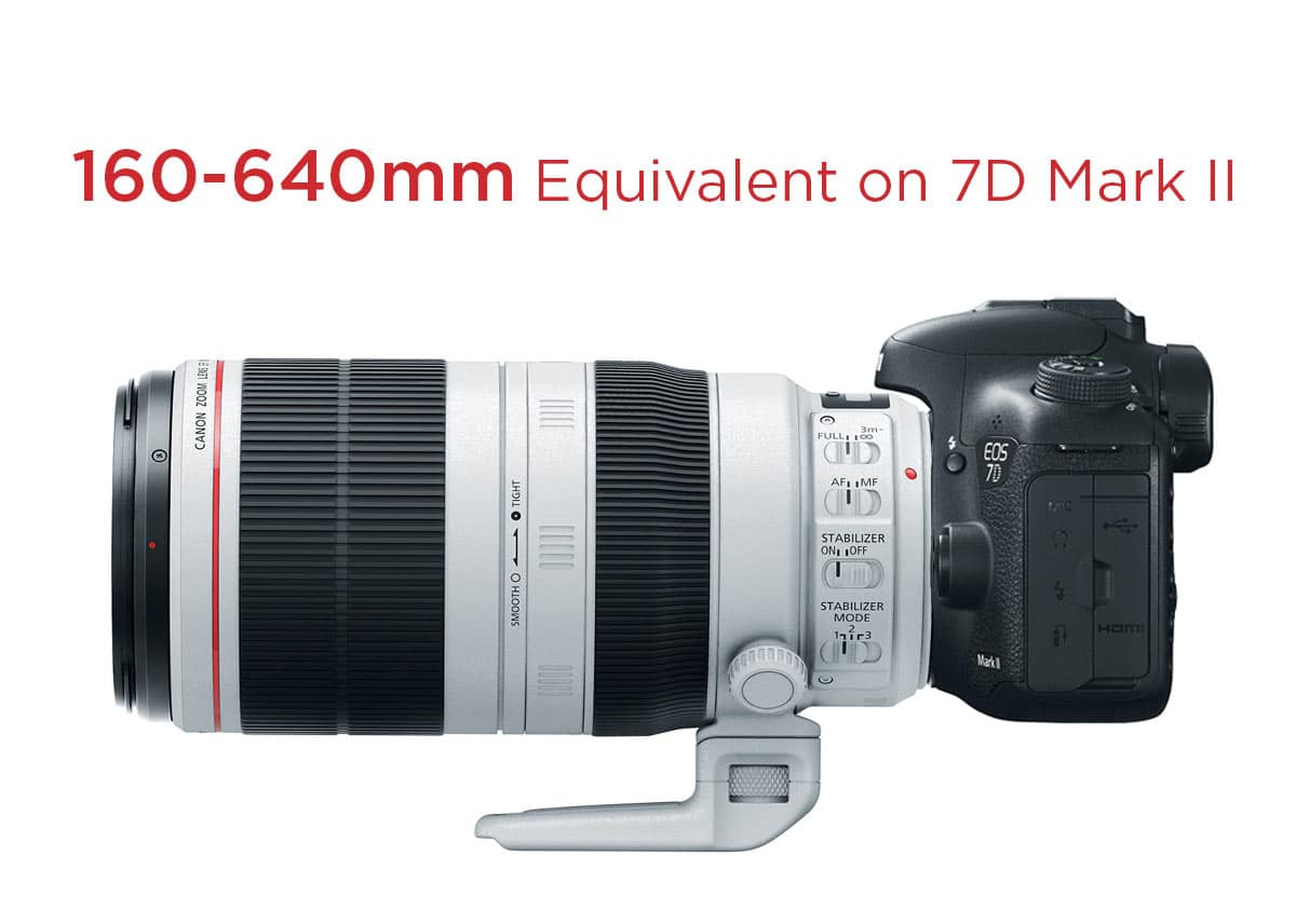 canon 7d mark ii canon 100 400mm l is ii perfect match. Black Bedroom Furniture Sets. Home Design Ideas