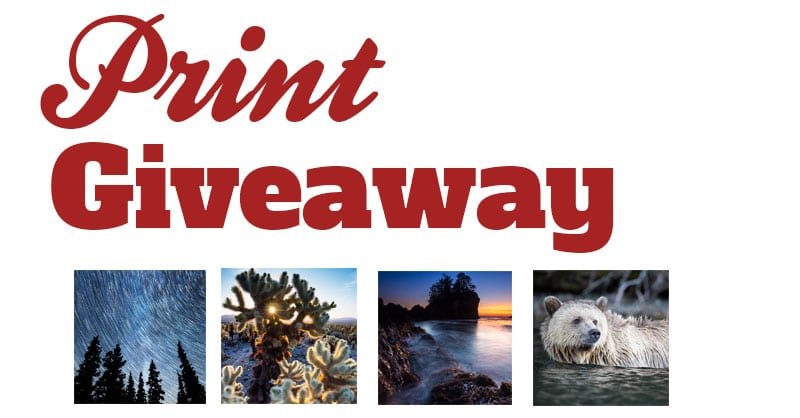 Closed: Print Giveaway!