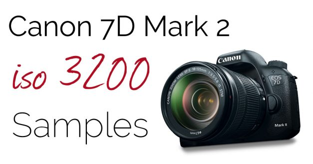 Canon 7D Mark 2 – ISO 3200 – Download High Res Samples