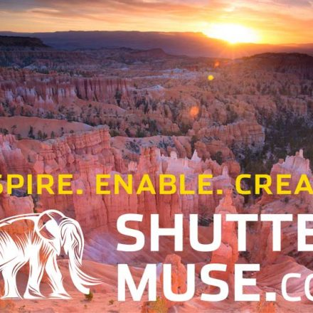 Shutter Muse Photography Website