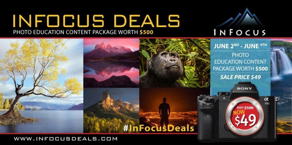 InFocus-Website-Newsletter-Banner