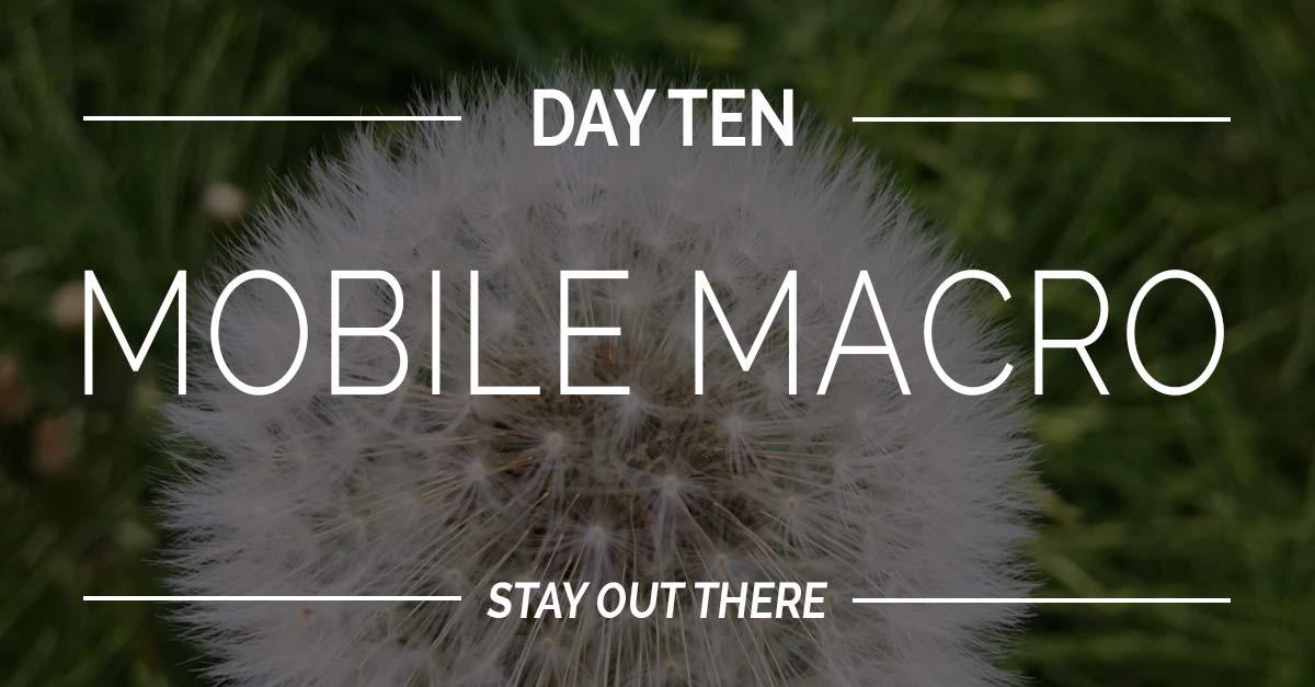 Day #10 | Macro Challenge