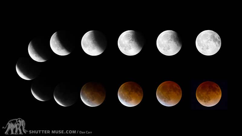 blood-moon-lunar-eclipse-dancarr