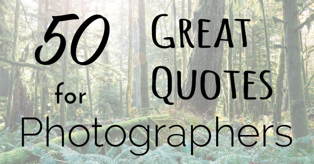 Great Quotes Classy 50 Great Quotes To Inspire The Photographer In You