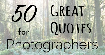 50 Great Quotes to Inspire the Photographer in You