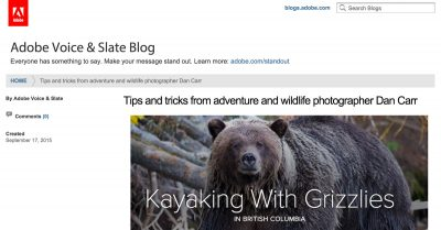 Tips and Tricks for the Adobe Blog