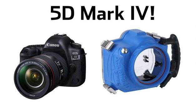 Am I Buying the New Canon 5D Mark IV??
