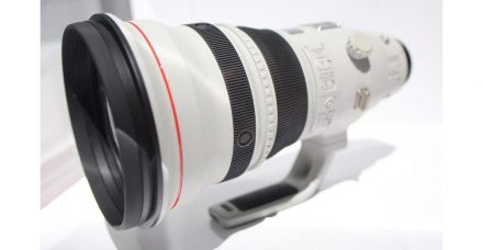 Canon 600mm f/4 DO on the Way