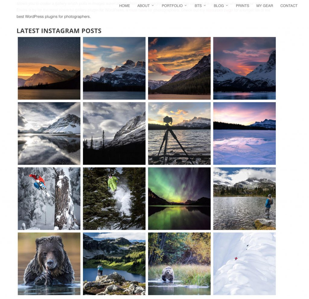 Instagram gallery on my site, created with Envira Gallery.