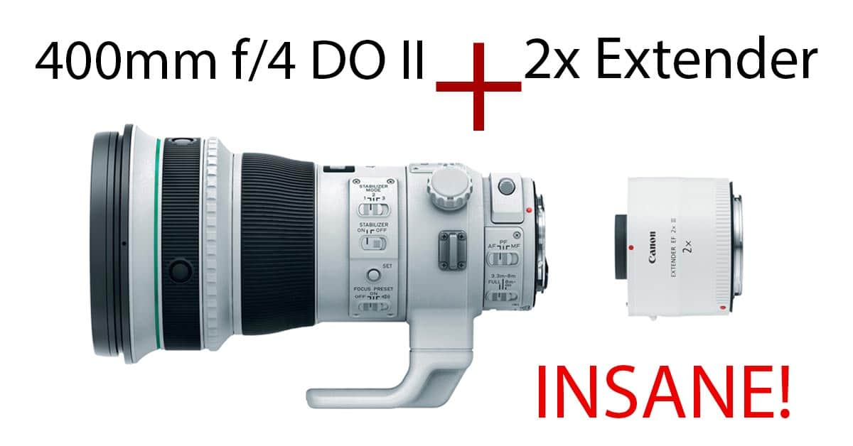 Canon 400mm F/4 DO IS II With 2x Extender – INSANITY!
