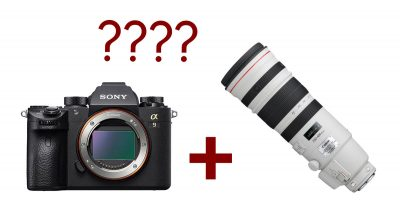 Can You Use Canon Lenses With the Sony A9? Kind of…