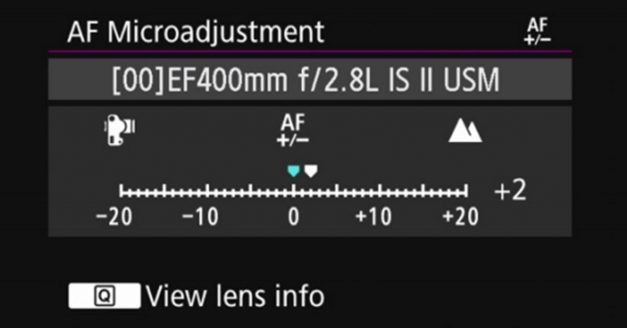 Do You Microadjust the Autofocus On Your Camera?