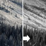 Behind The Shot: Frozen Forest in the Yukon